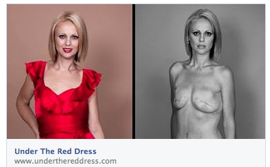 Under the Red Dress Project